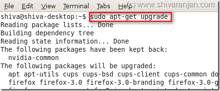 upgrade_ubuntu_8.10_1